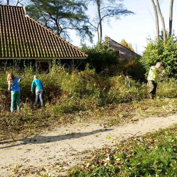 Natuurwerkdag in het Steenbergerpark
