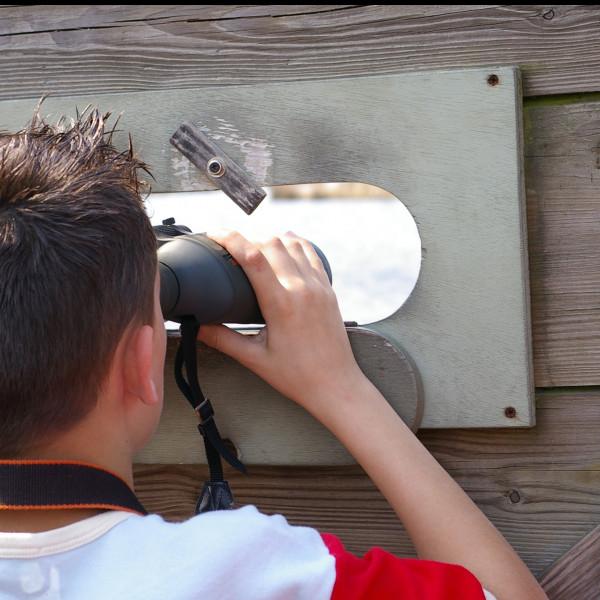 Jong Zuid: uitstapje naar een kijkhut in Diependal